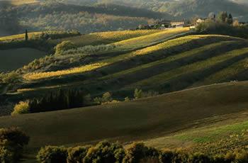 Il territorio della Toscana